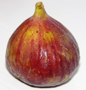 Wendy's Fig and Ginger Jam